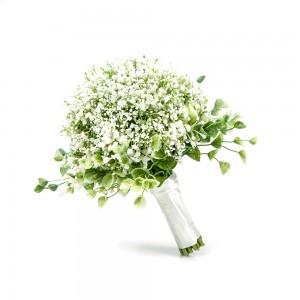 Beyaz Cipso – El Çiçeği